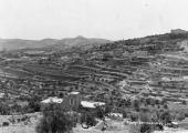 Terraced hillside of Bethlehem