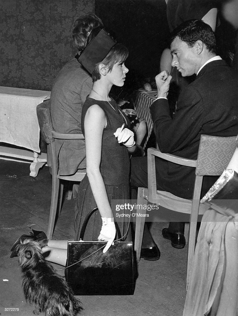 Hairdresser Vidal Sassoon talking to Miss <a gi-track='captionPersonalityLinkClicked' href=/galleries/search?phrase=Judy+Carne&family=editorial&specificpeople=1318138 ng-click='$event.stopPropagation()'>Judy Carne</a> who kneels beside him with her dog.