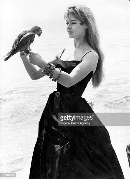 Brigitte Bardot originally Camille Javal began her career as a model and ballet student Her first film was 'Le Trou Normand' in 1952 which followed...