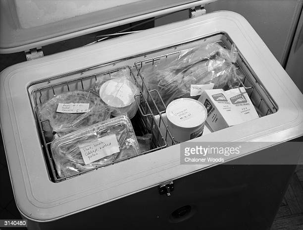 A freezer box containing various labelled packages and boxes including frozen duck chicken stock and raw liver