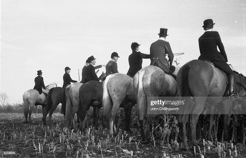 Members of the Pytchley Hunt waiting for a fox to come into view during a meeting in Daventry in Northamptonshire. Original Publication: Picture Post - 6531 - A Hunting We Will Go - pub. 1953
