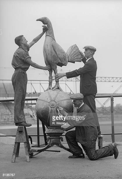 The nine foot high cockerel which normally sits above the stands at Tottenham Hotspur's ground in White Hart Lane being cleaned whilst the stands are...