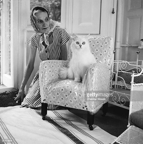 An elderly woman kneels on the floor beside a large white cat on a miniature armchair