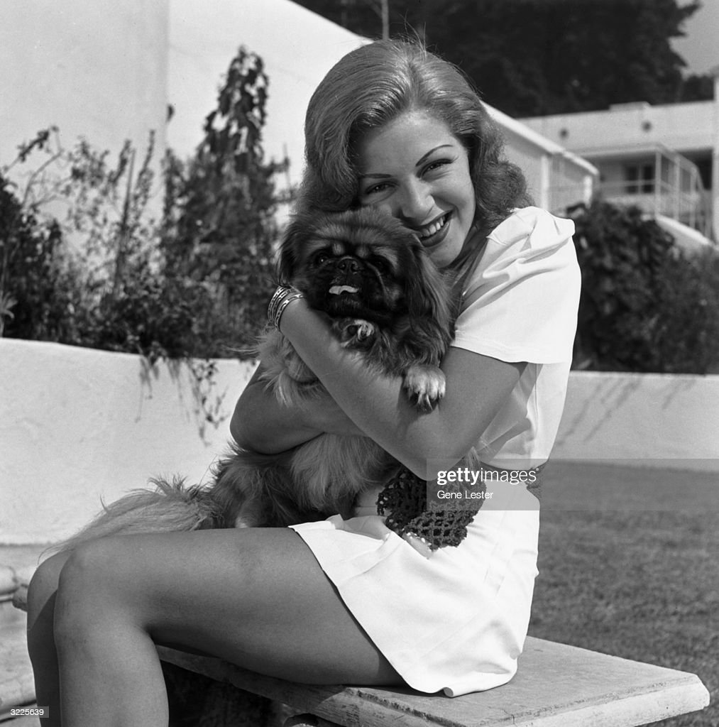 Portrait of American actor Lana Turner (1921 - 1995) smiling and sitting on a bench with a Pekinese in the backyard of her Sunset Plaza apartment complex, West Hollywood, California.