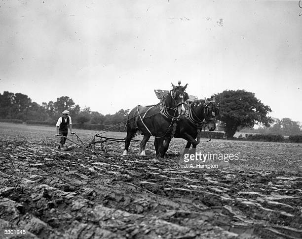A horsedrawn plough competing at the Chertsey Agricultural Show on the estate of Sir Edward Stern