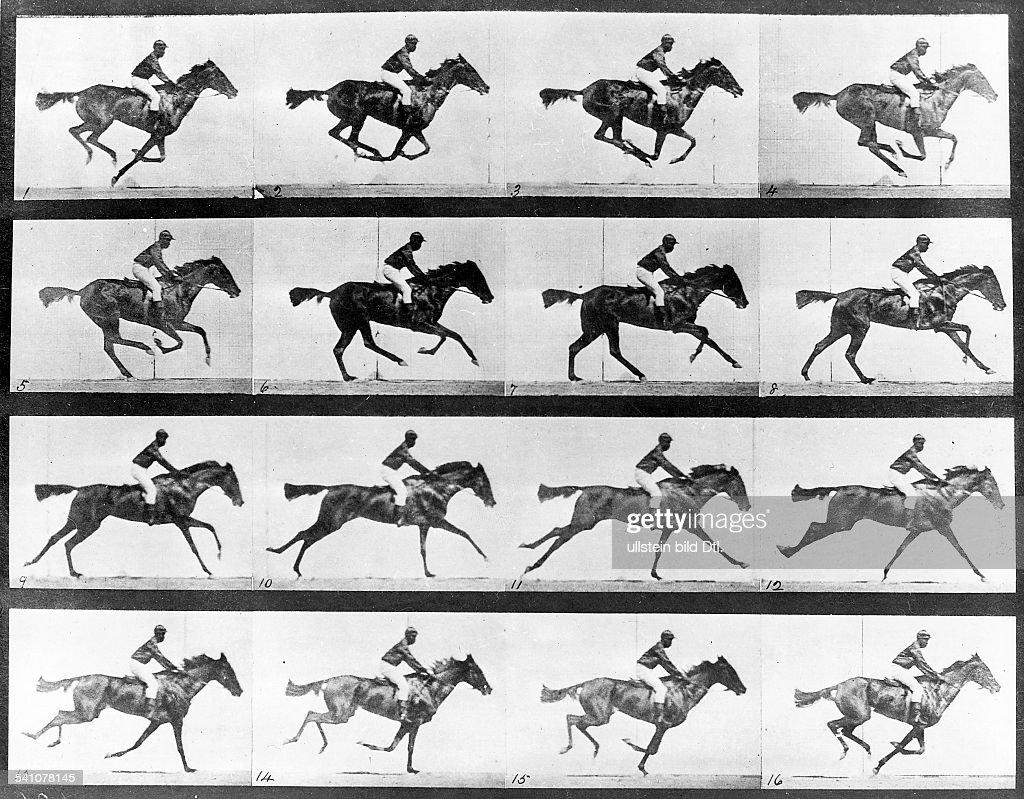 galoppierendes Pferdmit Reiter