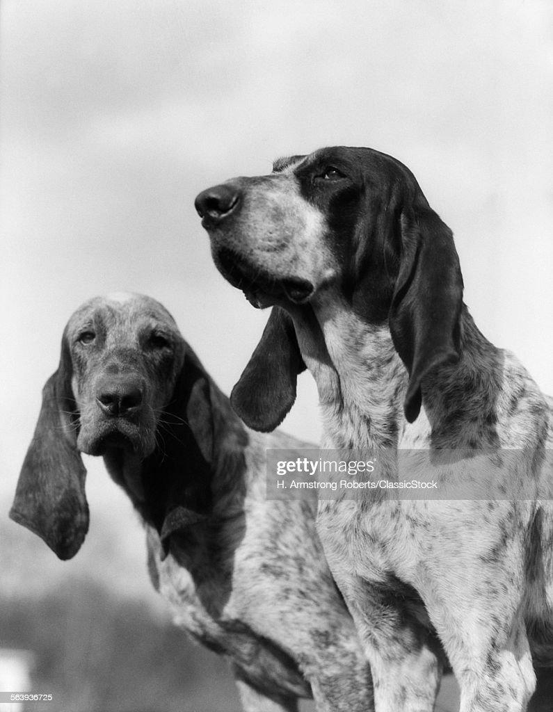 1930s PORTRAIT TWORENCH...