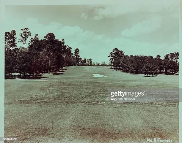 The eighth fairway at Augusta National Golf Club in Augusta Georgia