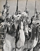 North African Campaign Colonial troop in Libya september 1940 The Royal Corps of Colonial Troops was a corps of the Italian armed forces in which all...