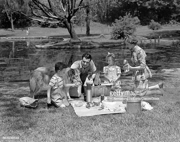 1950s FAMILY WITH COLLIE...