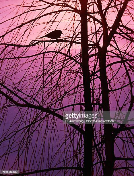 1980s BIRD SILHOUETTE IN...