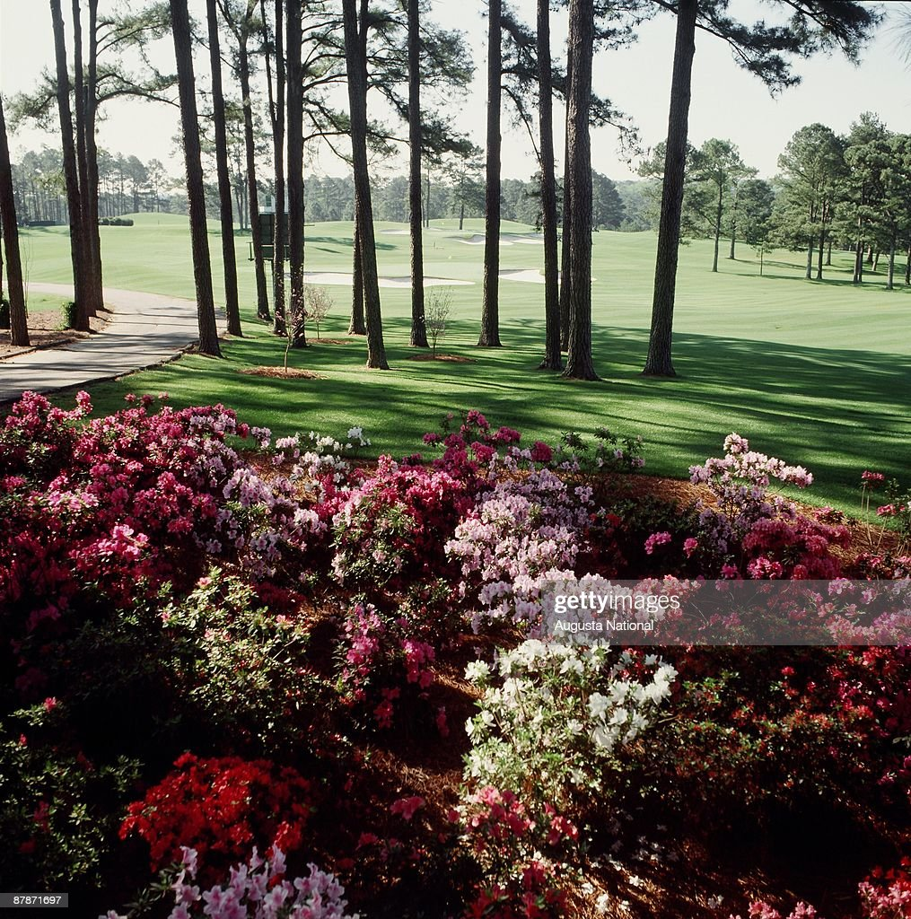 The second hole during a 1990s Masters Tournament at Augusta National Golf Club in Augusta Georgia