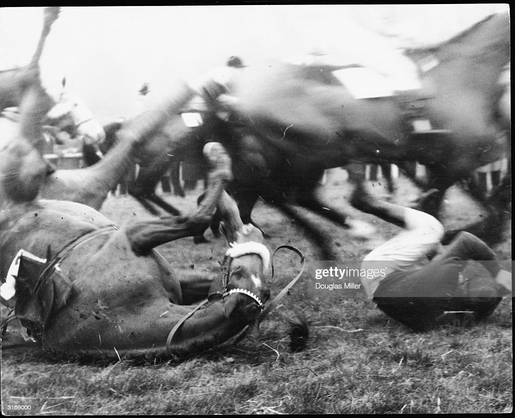 El Griego II ridden by Alan Honeybone falls during the Mildmay Memorial Chase at Sandown Park. The horse is a Grand National entry.
