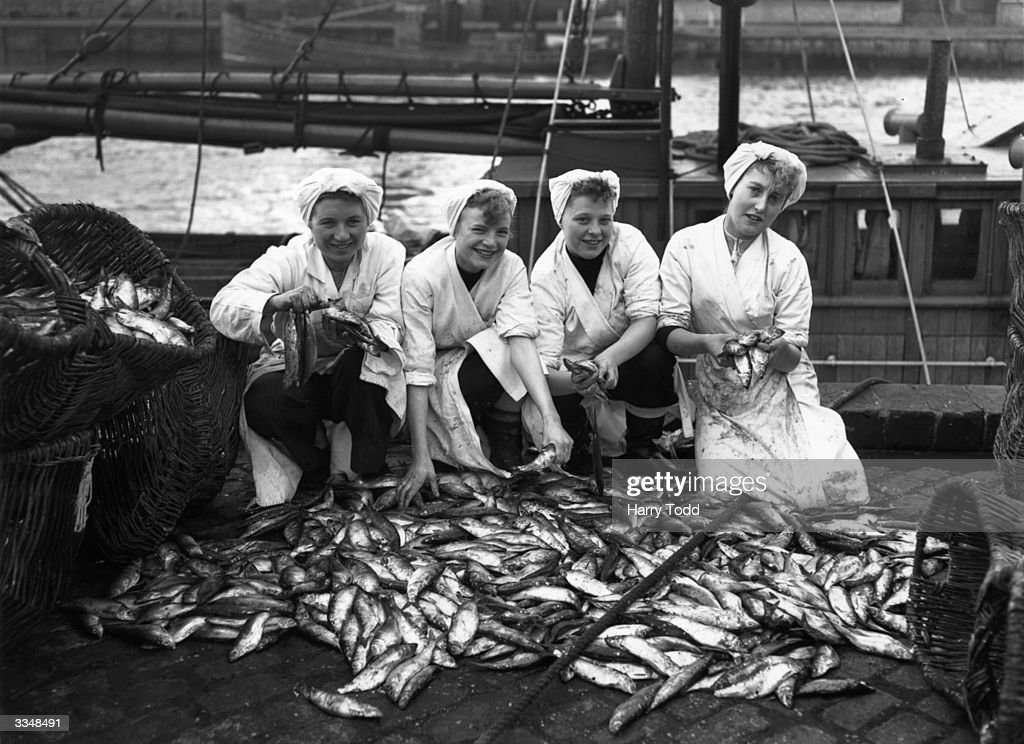 Four Yarmouth packer girls with some of the first autumn catch of herring Left to right Detoria Mardy Maureen Coleman Shirley Darnell and Verna...