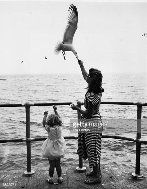 A woman and her 3yearold daughter feeding seagulls on the promenade during their holiday in St Ives Cornwall