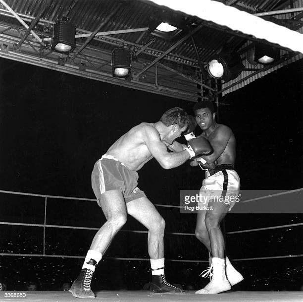 American boxer and world heavyweight champion Muhammad Ali and British champion Henry Cooper during their world heavyweight title fight in London Ali...
