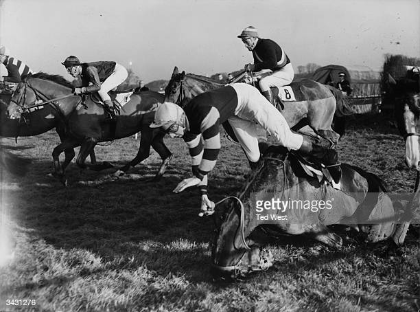 A Turnell takes a tumble on Publican during the Richmond Novices' Steeple Chase at Kempton Park as Border Mask ridden by David Mould rides on to...