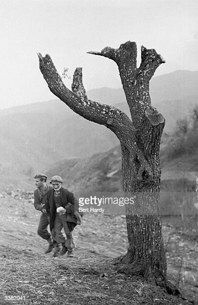 An old Greek man is escorted away from his orchard by a soldier as fighting with the guerrilla forces draws nearer during the Greek Civil War...