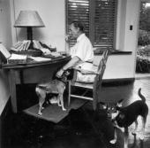 English writer Ian Fleming best known for his James Bond novels in his study at Goldeneye his Jamaican home
