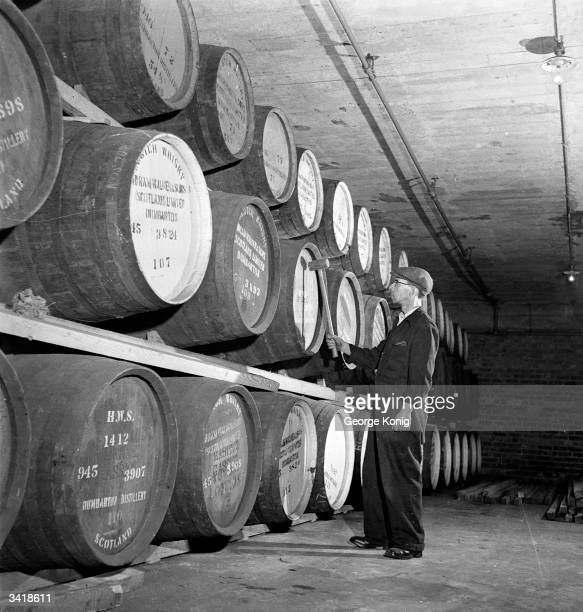 John Gillen an employee of the Hiram Walker Distillery at Dumbarton tapping casks of whisky in the warehouse Leaky and faulty casks are removed...