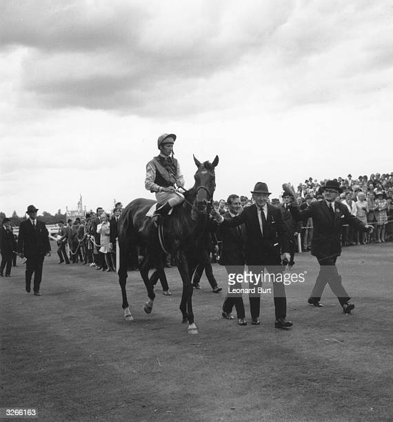 Three year old colt Nijinsky is led in by his trainer Vincento O'Brien after Lester Piggott rode him to victory in the King George VI and Queen...