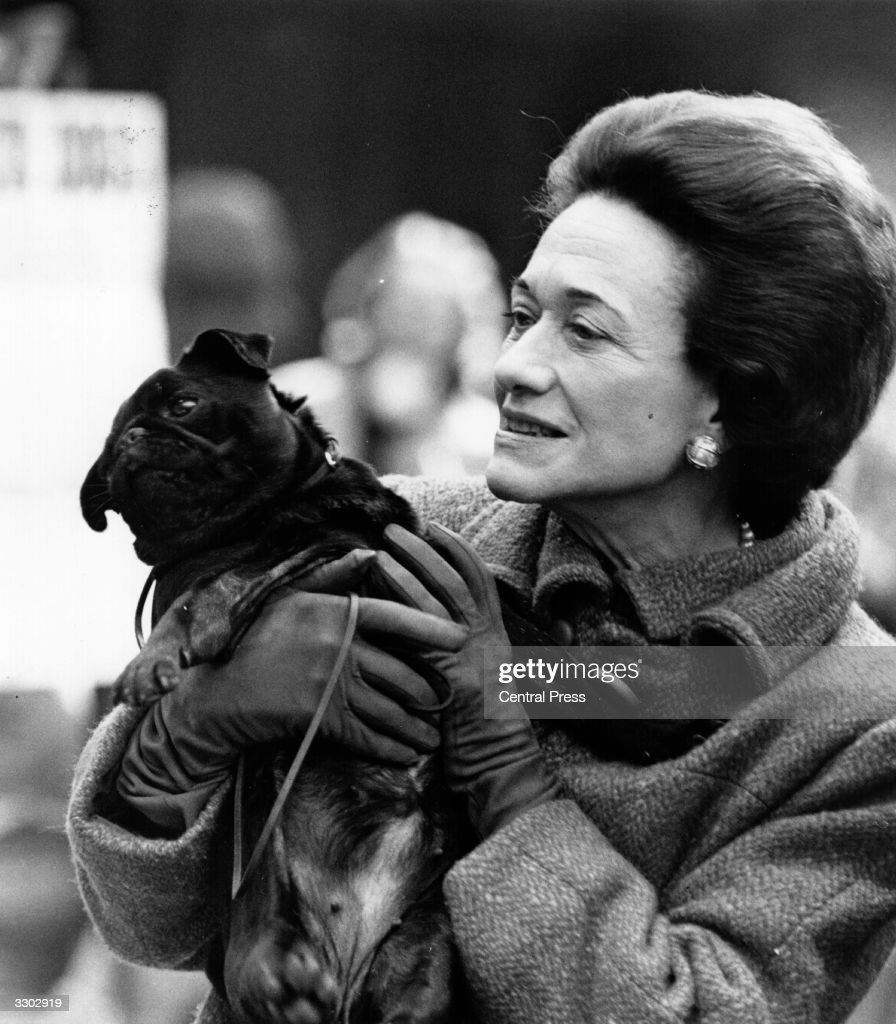 The Duchess of Windsor (nee Bessie Wallis Warfield) (1896 - 1986) holding a black pug dog at the Pug Dog Show held at Seymour Hall, London.