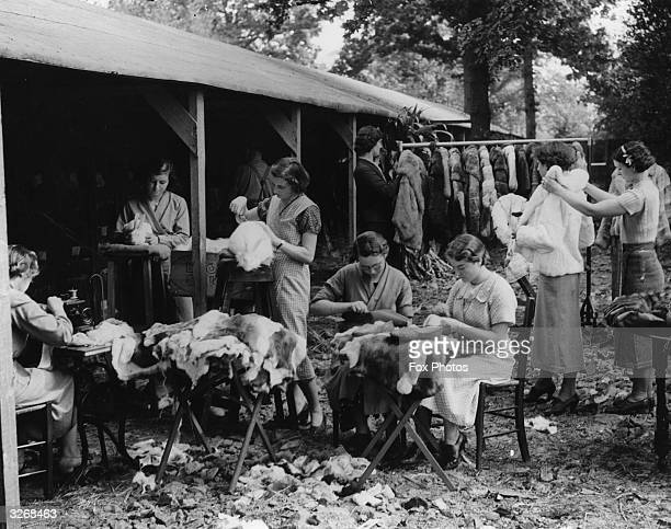 Women workers making coats wraps and slippers from rabbit and other animal furs in Sussex The goods are made for export to all parts of the world
