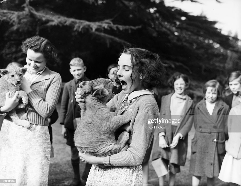 June Mottershead of Sedbergh, Yorkshire, is the guardian of a three week old lion cub, adopted from Chester Zoo, which is lacking in funds during World War II. June is the daughter of George Mottershead, founder of Chester Zoo.