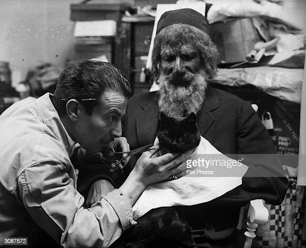 Feline film star 'Tibby' rests on the knee of Abraham Safaer leading man in her film for British Lion at Beaconsfield 'The Flying Squad' while makeup...
