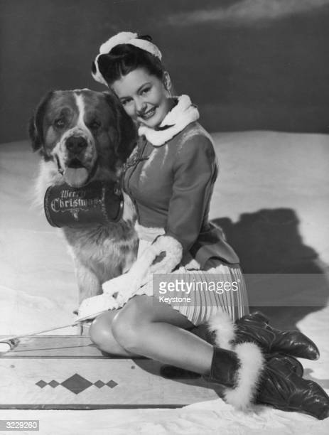 American actress and dancer Cyd Charisse with a St Bernard dog which is equipped with a barrel of brandy marked 'Merry Christmas'
