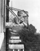 An example of the wire cage which East Poplar borough council in London propose to fix to the outside of their tenement windows so that babies can...