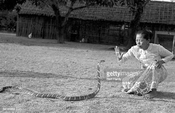 A snake charmer charming a cobra at Rangoon Original Publication Picture Post 4748 Snake Charmer pub 1950