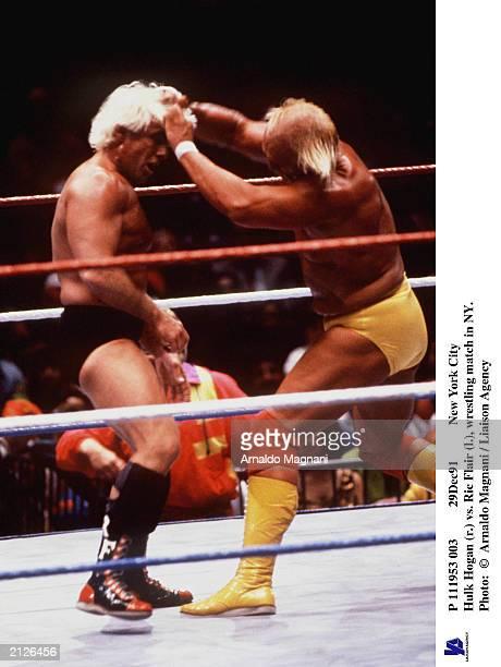 111953 003 29Dec91 New York City Hulk Hogan pulls the hair of Ric Flair during a wrestling match New York City New York December 1991