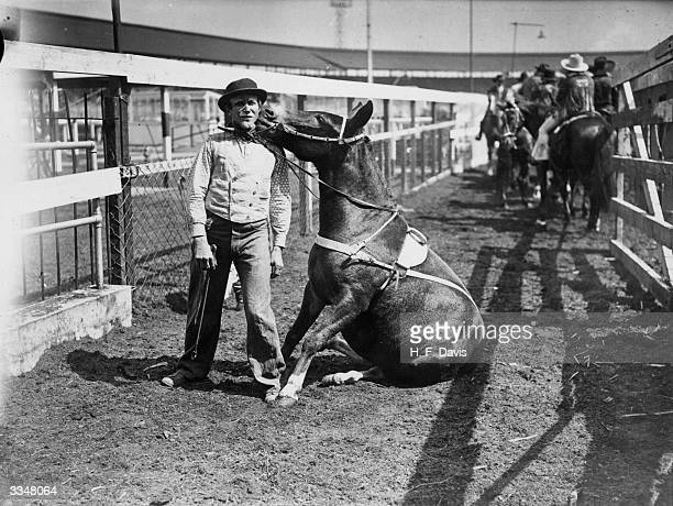 A mule named 'Mae West' is causing a stir at the World Champoinship Rodeo held at White City London with imitaitions of her owners movements and...