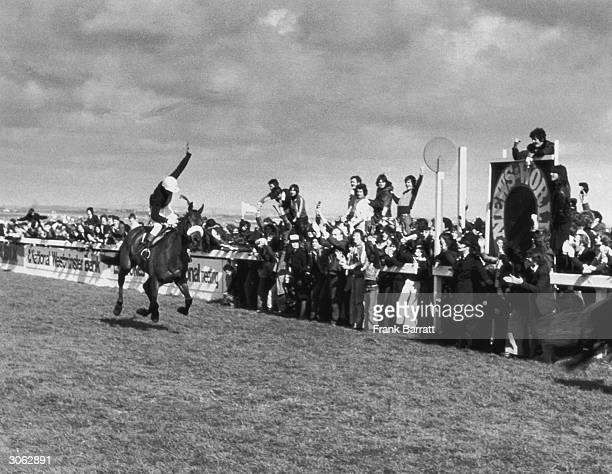 Racehorse Red Rum wins the Grand National race at Aintree for the third time with jockey Tommy Stack up