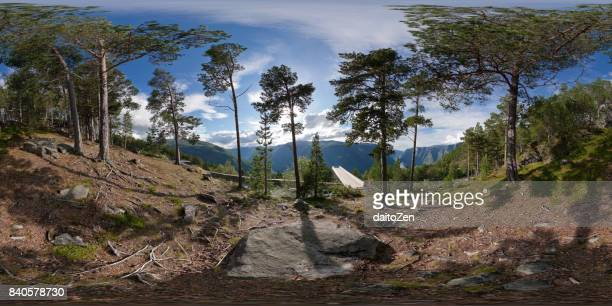 360-degree panorama of forest next to Stegastein viewing platform overlooking Aurlandsfjord, Sogn og Fjordane county, Norway, Europe