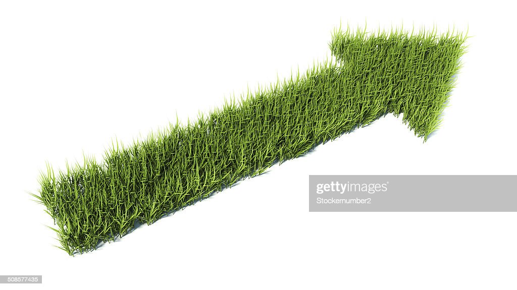 3d arrow made of grass : Stockfoto