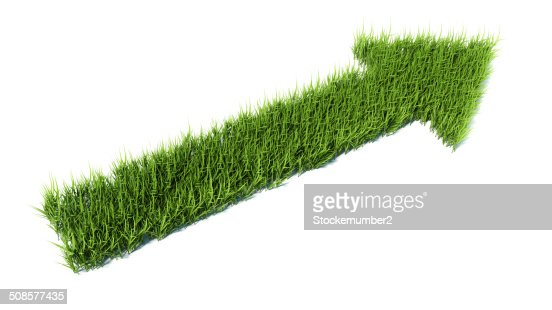 3d arrow made of grass : Stock Photo