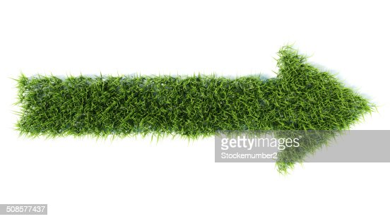 3d arrow made of grass : Bildbanksbilder