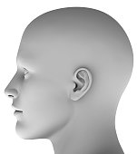 3d head isolated on white background hires ray traced