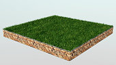 3d of isometric cross section of ground with grass