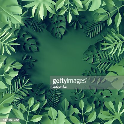 3d render, tropical paper leaves, blue scene background, jungle, frame : Stock Photo