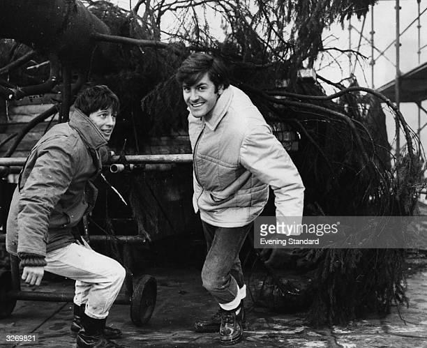 BBC's 'Blue Peter' presenters Joan Noakes and Peter Purves pulling the Christmas tree to be erected in Trafalgar Square which is traditionally...