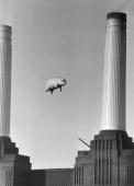 A 40foot long inflatable pig suspended between two of the chimneys at Battersea Power Station London during a photoshoot for the cover of Pink...