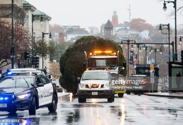 A 42foot Balsam Fir makes its way up Congress Street to Monument Square on Thursday where city workers would install this year's Christmas tree The...