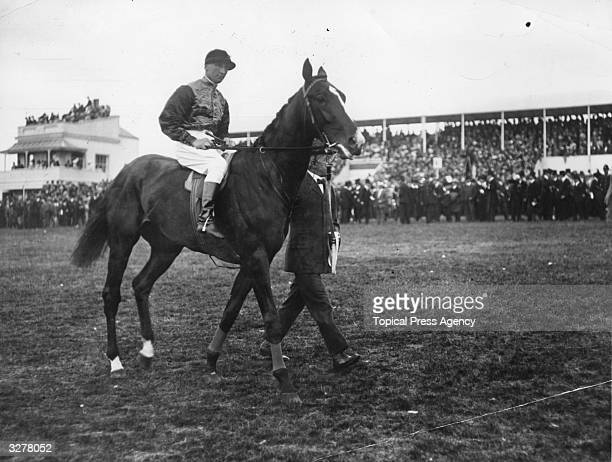 Anmer the Kings horse under which Emily Davison the suffragette threw herself and was killed