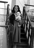 4th September 1947 Southampton England US actress Elizabeth Taylor is pictured on board the liner Queen Mary carrying her two French Poodle dogs...