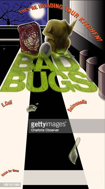 51p x 92p color illustration of 'bugs' on a kitchen counter