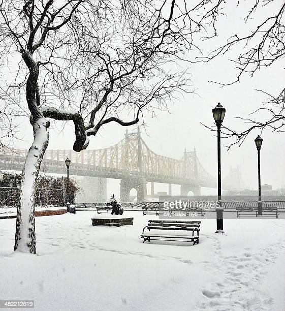 Stati Uniti, New York City, vista 59th Street Bridge durante