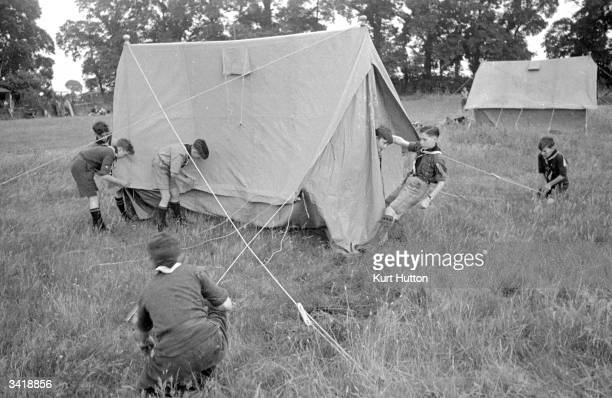 boyscout camping stock photos and pictures getty images